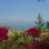 The Sea of Galilee near the Church of the Beatitudes